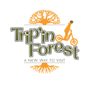 Logo Trip In Forest